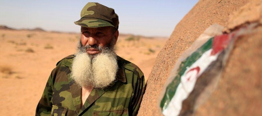 دبلوماسية حساسة في الصحراء الغربية